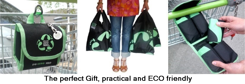 Footprint Bag best reusable bag